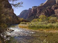 Zion National Park, Utah, Virgin river (swissuki) Tags: zion national nature river mountain landscape largelandscape utah ut usa park