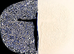 ●Cosmic Spirit-The Adam (Wonil Lee) Tags: cosmicspirit spirit soul mind meditation chi ki wave formation tao taichi one adam yin yang way relationship glory partner horizon season mother stage drawing oil painting watercolor mixed media ink photoshop dot line shape 3d man woman sex birth life love dead bright dark paper canvas abstract quasiabstract pattern circle round organic texture curve black background lines minimalism symmetry diagonal horizontal surreal geometric photo border
