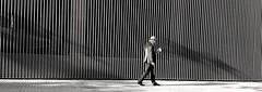 Lector empedernido (jantoniojess) Tags: blancoynegro blackandwhite monochrome monocromático sevilla seville andalucía españa spain lectura lector streetphotography fotografíacallejera fotografíaurbana reading