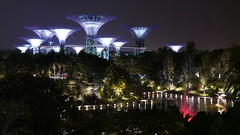 Gardens by the Bay, Singapore (Mark Tindale) Tags: singapore marinabaysands gardensbythebay marinabay gardens evening night trees