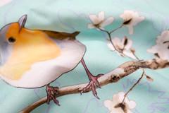 Euro robin fabric (Chrejsa) Tags: spoonflower fabric swatch european robin