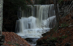 Dreamy Falls (Diane Marshman) Tags: waterfalls water flowing falls cascading rocks forceful powerful running fall autumn season pa pennsylvania nature leaves trees scene scenic