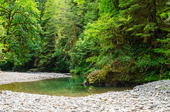 River Bend (Tom Fenske Photography) Tags: river summer tranquil slow green tree lush rocks stones mountain reflection