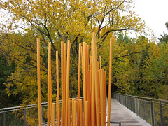 At the Orchard Overlook (Bruces 51) Tags: whiting forest canopy walk dow gardens midland michigan