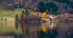 Kismul (2000stargazer) Tags: kalandsvatnet kismul fana bergen norway lake reflections autumn autumncolors fall forest trees landscape waterscape october nature canon gettyimages