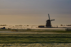 where are the camels? (Woewwesch) Tags: misty icy frozen sunrise windmill netherlands meadow morning outside cows cold autumn