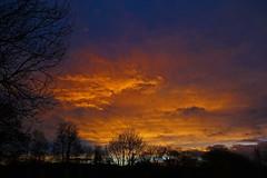 sunrise - Cullompton Leat Fields, Cullompton, Devon - Dec 2018 (Dis da fi we) Tags: sunrise cullompton leat fields devon cloud orange blue tree trees sky