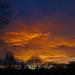 sunrise - Cullompton Leat Fields, Cullompton, Devon - Dec 2018