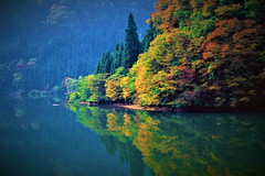 Colorful Tadami River 5 (chikaraamano) Tags: river colors crisp big tadami sunlight red lovely water mountain leaving season landscape beautiful autumn stream flow finally forest naturallight outdoor nature japan