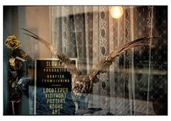 (schlomo jawotnik) Tags: 2019 oktober stockholm schweden gamlastan altstadt schaufenster schlomostierwelt spookie analog film kodak kodakproimage100 usw