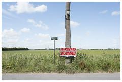 Lissewege (epha) Tags: belgium belgië flandern flanders flandre westvlaanderen zeebrugge strawberries erdbeeren aardbeien