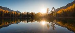 Lagh da Saoseo Ⅳ (brue') Tags: switzerland graubünden schweiz camp val da grisons water lake mountains sun sunset sky forest trees island landscape rock saoseo lagh