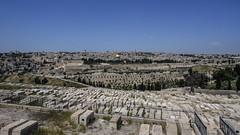 Graves facing Jerusalem (Lawrence OP) Tags: mountofolives cemetery graves jerusalem holyland