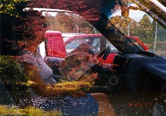 Driven (fillzees) Tags: doubleexposure person girl woman car automobile driver accident seated sitting skirt candid airbag tree pond dated crash deployed aftermath number