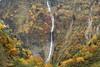 Hannoki Falls (Teruhide Tomori) Tags: falls autumn landscape nature mountain forest tree toyama tateyama japan japon 称名滝 立山 中部山岳国立公園 日本 秋 自然 森 紅葉 teteyama 富山県 滝 fog mist 霧