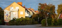 Uppsala, September 26, 2019 (Ulf Bodin) Tags: autumn sorbusaucuparia sverige architecture fålhagen backsippan canonrf85mmf12lusm uppsala rönnbär outdoor höst canoneosr sweden rowanberries uppsalalän