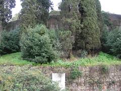 Mausoleo di Augusto_06