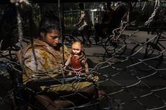 (Muhammad Imam Hasan Dhaka SP) Tags: street streetphotographer streetphotography muhammadimamhasan dhaka bangladesh candid decisivemoment people photography photographer