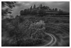 Lensbaby 12 (Outlaw Pete 65) Tags: landscapes road trees sky castle alberi clouds strada nuvole vineyards cielo castello vigneti italia lombardia gussago paesaggi blackandwhite biancoenero nikond750 lensbabycomposersweet35optic