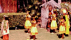 Procession (fillzees) Tags: candid costume hut skirt headdress group procession royalty performance outdoor statue sculpture tree palm shrubbery shrub tropical lei pagentry spectacle
