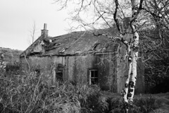 Remains of Glenree Millhouse (Dave Russell (1.5 million views thanks)) Tags: remains derelict building architecture glenree mill sliddery water isle island arran clyde west western scotland ecosse outdoor canon eos eos7d 7d photo photograph photography bw black white blackandwhite mono monochrome autumn 2019 ross theross house millhouse