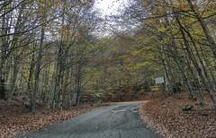 Autumn Postcard (Luna y Valencia) Tags: tuscany toscana mount amiata monte autunno autumn