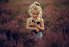 Kee ({jessica drossin}) Tags: jessicadrossin child childhood teddy bear blonde kid little girl sweet field pink purple happy smiile face portrait alone wwwjessicadrossincom