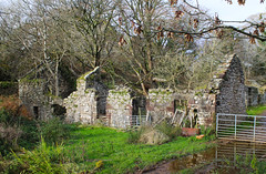 Remains of Glenree Mill (Dave Russell (1.5 million views thanks)) Tags: glenree mill building remains derelict old ancient farm theross ross isle island arran west western scotland ecosse clyde outdoor autumn 2019 canon eos eos7d 7d photo photograph photography