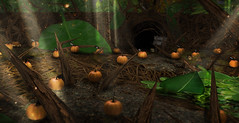 MadPea's Terrifying Tale Trail - Prize Area! (MadPea Productions) Tags: madpeaproductions madpeashalloweenexperience madpeas madpeasterrifyingtaletrail madpea prize prizes game games gaming fun squashablepumpkins accessories accessory decor decorations decoration achievement achievements