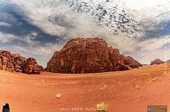 Red Sands (MolviDSLR) Tags: grass dry sand landscape exotic east nature hills hill orange sea beach ocean outside desertheat dslr tourism sky trip cloud maqk arab adventure nikon clouds middleeast orangesand saudi sunset molvidslr saudiarab tabuk mountains saudiarabia outdoor mountain goldengrass rocks bluesky sands gold historical scenery arabia travel landscapephotography gulf history heritage desert nikkor 2019 red redsands