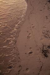 DryTortugas_132 (rvogt0505) Tags: drytortugasnationalpark nationalpark drytortugas florida sunset beach footprints sand