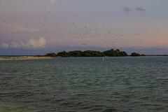 DryTortugas_120 (rvogt0505) Tags: drytortugasnationalpark nationalpark drytortugas florida sunset beach ocean