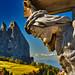 Schlern - Seiser Alm - Dolomites UNESCO