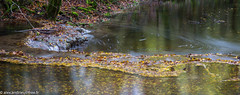 Vers-2019-7 (Alex Andrieu) Tags: rivière nature lot eau pose longue occi