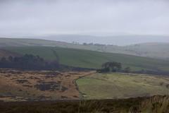 Novemberish (Tony Tooth) Tags: nikon d600 nikkor 105mm landscape countryside mist rain moors moorland staffordshiremoorlands england november