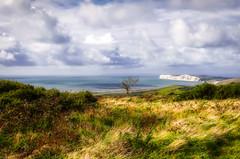 Isle of Wight (Donna Joyce) Tags: isleofwight uk landscape view coast cliffs coastal sea tree fields heathland clouds sky hdr