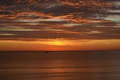Before Sunrise - Antes del amanecer (En memoria de Zarpazos, mi valiente y mimoso tigre) Tags: sunrise sea seascape skyfire skyred skyscape clouds boat beach amanecer alba mar mare sun sol sole playa spiaggia barca amanecerrojo alicante nikon