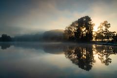Parc de la Tête d'or (Laetitia.p_lyon) Tags: fujifilmxt2 lyon parcdelatêtedor reflet reflection lac lake leverdusoleil sunrise brume mist haze