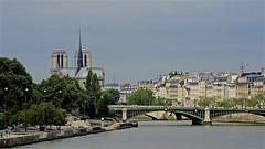 Notre-Dame en 2016 (mifranc91) Tags: d700 nikon 28180 paris notredame 2016 france bâtiments buildings river rivière pont bridge seine reflets