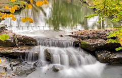 #Autumn - 7646 (✵ΨᗩSᗰIᘉᗴ HᗴᘉS✵84 000 000 THXS) Tags: autumn water automne waterfall eau europa belgium autumnleaves cascade aaa hss pairidaiza sliderssunday friends party look photo eu be fr interest flickering greatphotographers namuroise yasminehens lanamuroise iphone11promax iphone