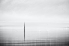 Lakeside November... (Ody on the mount) Tags: abstrakt bodensee canon g7xii natur nebel powershot wasser abstract art bw blackandwhite fineart fog mist monochrome nature photoshop sw schwarzweis water
