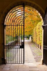 Enter autumn (jedrek.morzy) Tags: cambridge autumn gateway door entrance leaves colour path