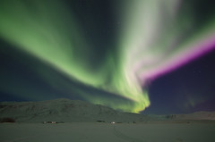 Aurora blow out (stephen_price) Tags: aurora auroraborealis northernlights nikon d7000 iceland tokina1116mm night sky stars snow