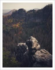 unerreichbar (Norbert Kaiser) Tags: sachsen saxony sächsischeschweiz saxonswitzerland elbsandsteingebirge elbesandstonemountains sandstein sandstone felsen hinteresächsischeschweiz bärenfangwände böseshorn totalreservat kernzone nationalparksächsicheschweiz herbst autumn