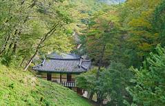 La vallée du temple de Golgul (Région de Gyeongju, Corée du sud) (dalbera) Tags: dalbera coréedusud gyeongju ermitage bouddhisme sunmido bouddha templedegolgul