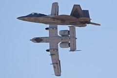 Raptor A10 (Boris.Motel) Tags: raptor f22 a10 warthog thunderbolt us air force usaf nellis afb base nevada usa military planespotting fightingjets