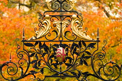 Clare's autumn (jedrek.morzy) Tags: cambridge autumn clarecollege crest old leaves colors colorful