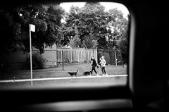 (Džesika Devic) Tags: black white blur overexposed girls dogwalkers dogs street photography kodak leica m6 grain film 35mm toronto kids littledoglaughednoiret