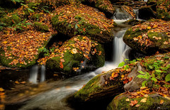 Whispering Spirits (James Korringa) Tags: greatsmokymountainsnp tennessee stream fall autumn scenic flowing water leaves