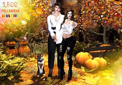 1,500 Followers 🎉 Thank you so much for your support 💗 (Scarlett Saphira) Tags: 1500 followers thankyou much for your suppoert sl secondlife second life game maitreya signature catwa head magy victor couple bento pose fall season autumn pumpkins pumpkin dog pet shiba black white outfit theme studio